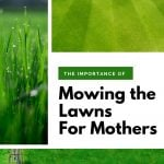 collage of images showing mown lawns