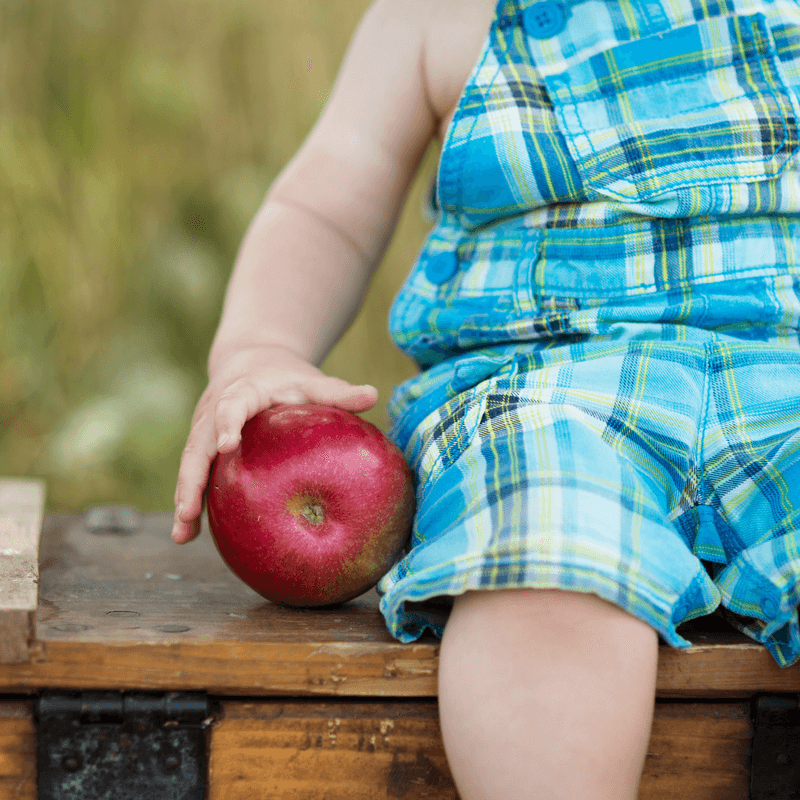 Practical tips to help picky eaters eat well at meal time
