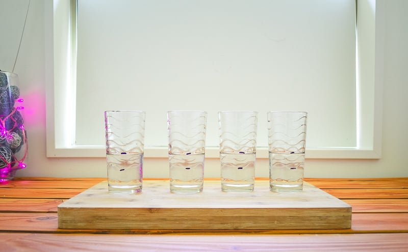 Four empty glasses marked to 100 ml
