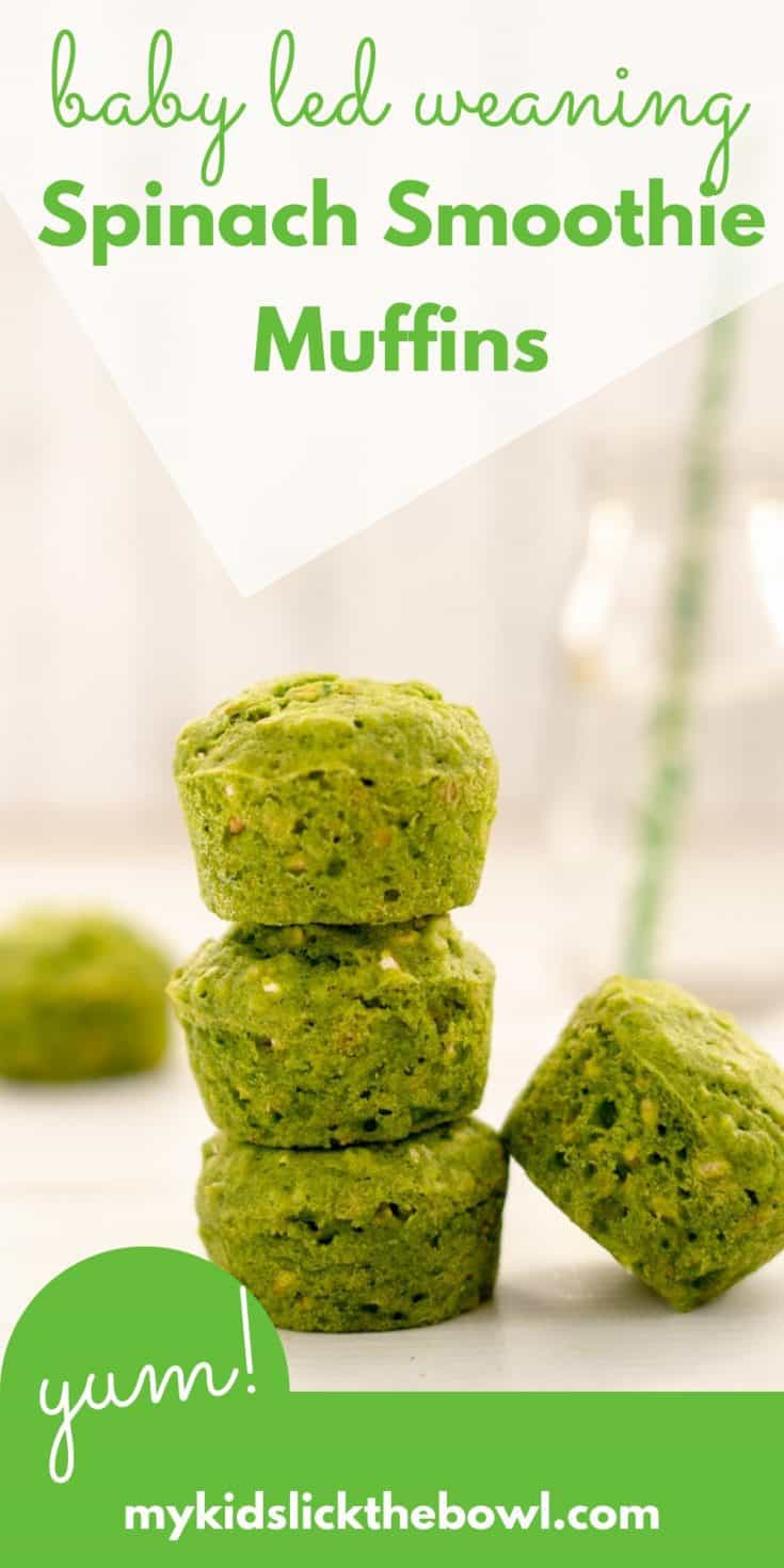 A baby-led weaning blender muffin based on a green smoothie, no are refined sugar #muffins #babyledweaning #babyfood