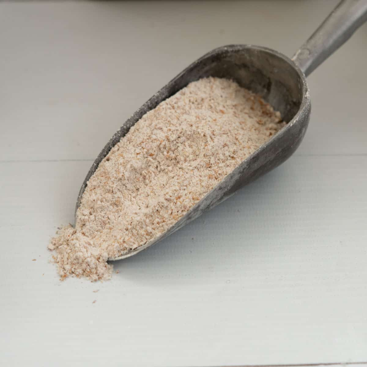 scoop of wholemeal flour, showing the coarse texture