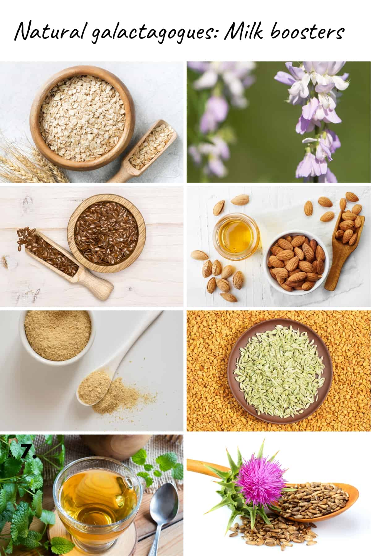 8 photo collage of natural galactagogues: Oats, goats rue, flax seed, almonds, fenugreek, fennel. brewers yeast, lemon balm, milk thistle