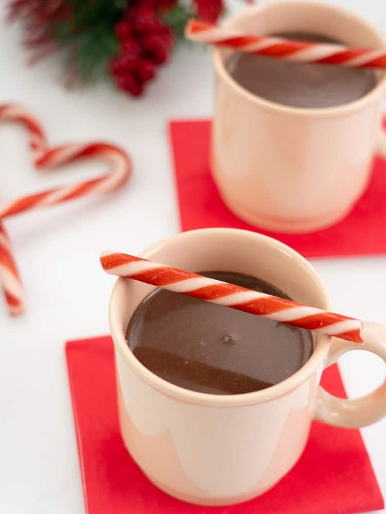 mug of hot chocolate decorated with candy canes