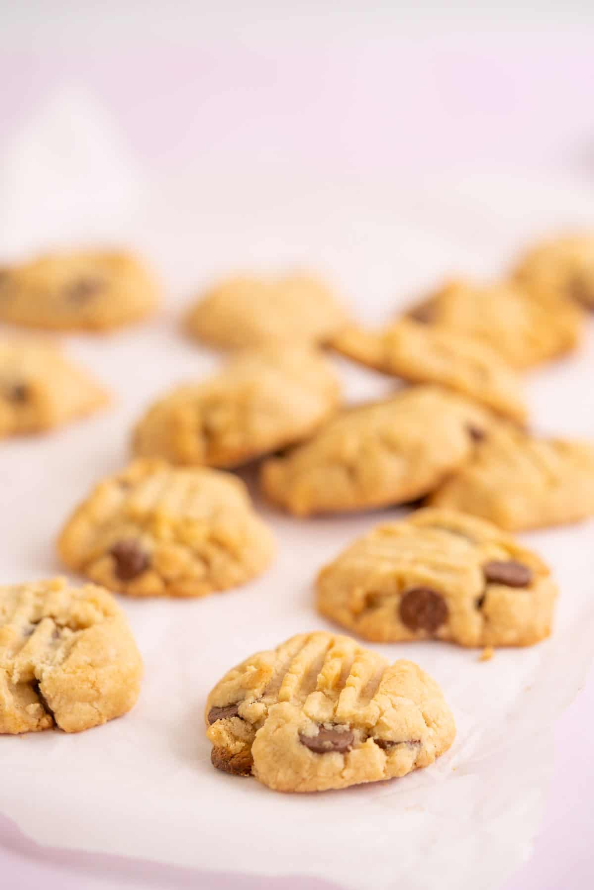 Gluten free vegan cookies lying scattered on a piece of baking paper, with a pink background.
