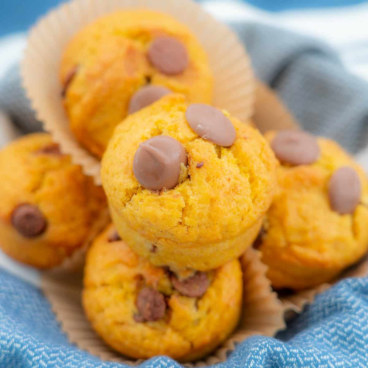 Pumpkin chocolate chip muffins in a bowl lined with blue cloth.