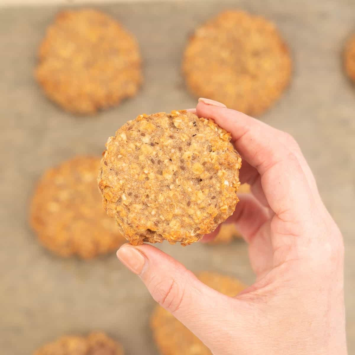 A hand holding an oatmeal toddler cookie above a tray of baked cookies.